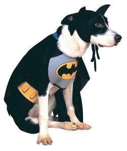 Albie's First Choice: Batman