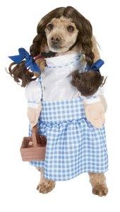 HAHA - This makes me wish we had a girl dog too