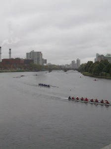 some of the Boston skyline in the background as the people go rowing by
